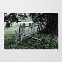 slightly green Canvas Print