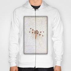 Dragonfly on Wall Hoody