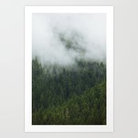 Tree Fog Art Print
