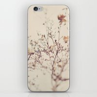 Winter. Magnolia Tree iPhone & iPod Skin