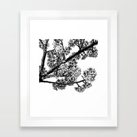 Cherry Blossom #6 Framed Art Print