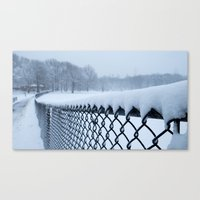 Snow In Central Park VI Canvas Print