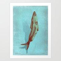 headfish... Art Print