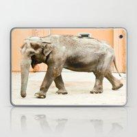 Smiling Elephant Laptop & iPad Skin