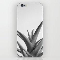Leaves II iPhone & iPod Skin