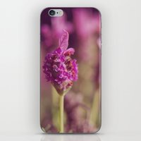 Lavender iPhone & iPod Skin