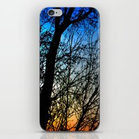 Avian Choir iPhone & iPod Skin