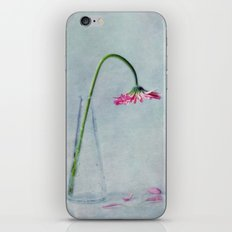 he loves me, he loves me not iPhone & iPod Skin
