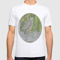 Falcon Gazing Mens Fitted Tee Ash Grey SMALL