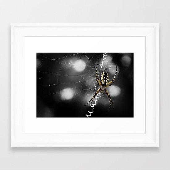 Banana Spider Macro Color Pop Framed Art Print