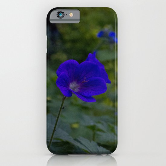 Summer Purple flowers iPhone & iPod Case