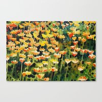 California Popies Canvas Print
