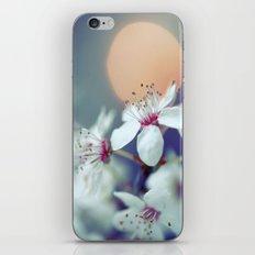 Oriental Blossom iPhone & iPod Skin