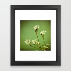 Florets in May Framed Art Print
