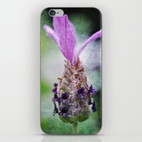 Finding The Calm iPhone & iPod Skin