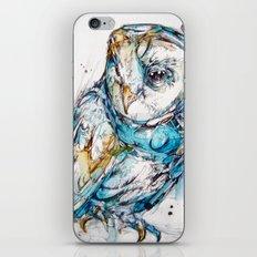 The Sea Glass Owl iPhone & iPod Skin