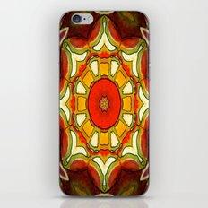 Mexico iPhone & iPod Skin