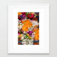 Many Colors Framed Art Print