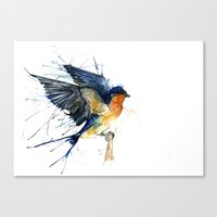 Swallow 3 Canvas Print