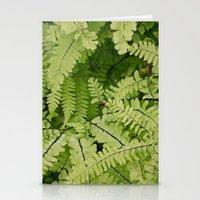 Ferns. Stationery Cards