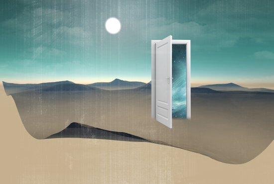 door to a void Art Print