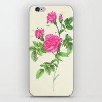 Ballpoint Pen, Redouté'… iPhone & iPod Skin