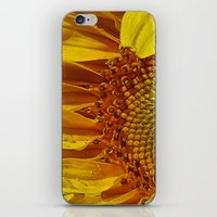 Inside The Sunflower iPhone & iPod Skin