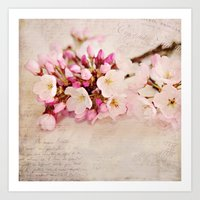 cherry blossoms with typography Art Print