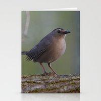 Gray Catbird Near Sunris… Stationery Cards