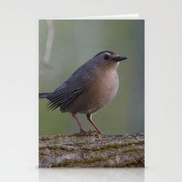 Gray Catbird Near Sunris… Stationery Cards