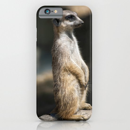 Meerkat iPhone & iPod Case
