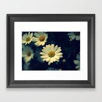 Fresh Daysies Flowers 09… Framed Art Print