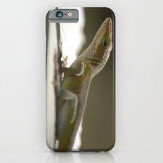 the Morning's Bath iPhone 6 Slim Case