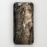Life's A Birch iPhone & iPod Skin