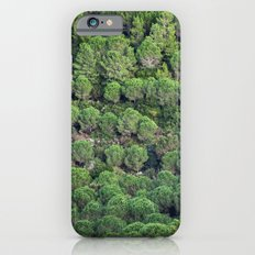 Young pine forest 6809 iPhone 6s Slim Case
