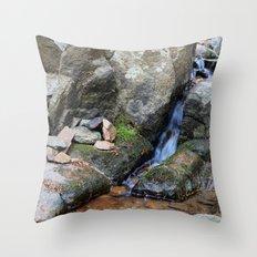 Upper Maxwell Falls in Autumn Throw Pillow