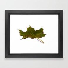 Faded green leaf #4 Framed Art Print