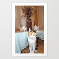 CATS WITH DRIED FLOWERS Art Print