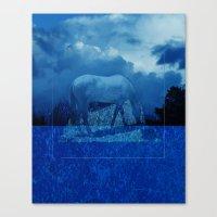 Night Dream Canvas Print