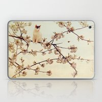 Cat in tree  Laptop & iPad Skin