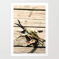 CrabWalk Art Print