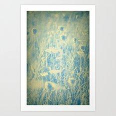 Old Ivory Lace and Worn Denim -- Duotone Wildflower Botanical Art Print
