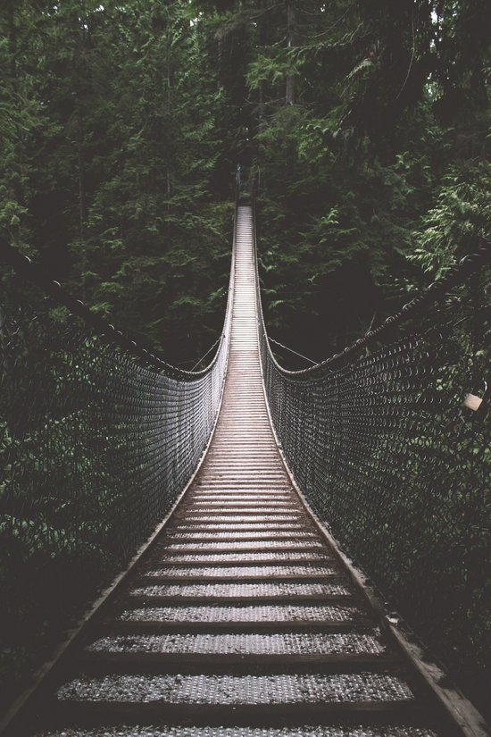 Lynn Canyon Suspension Bridge Art Print