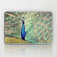 Pretty as a Peacock Laptop & iPad Skin