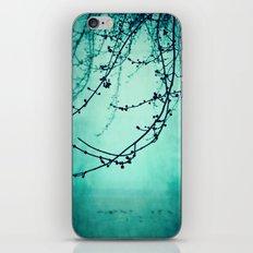 Fog of Green iPhone & iPod Skin