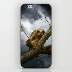 The seer of souls iPhone & iPod Skin