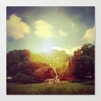 Burning Bush Canvas Print