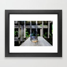 multi bird Framed Art Print