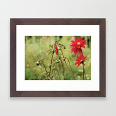 Red... Framed Art Print
