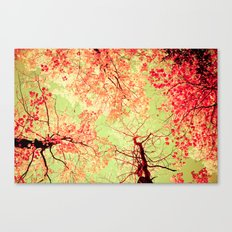 Color Drama II Canvas Print